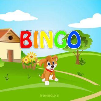 Ringtone: Bingo - SMS