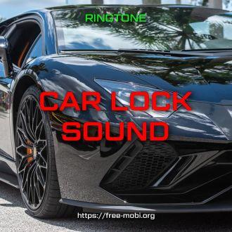 Car lock sound