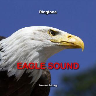 Ringtone: Eagle sms