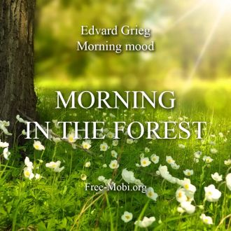 Ringtone: Morning in the forest