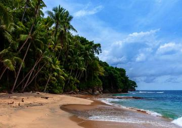 Beach, Panama