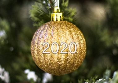 2020 New year toy on a tree